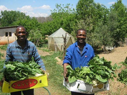 Bringing food security to the forefront